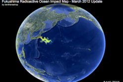 Ocean Radiation Plume Hits Hawaii From Fukushima Nuclear Meltdown