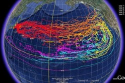 NOAA's Fukushima Pacific Ocean Debris Circulation Forecast