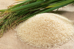 Food Riot Fears Strike Japan After Rice Trading Halted Due To Radiation Contamination