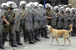 Widespread Civil Unrest, 'Financial Armeggedon' Looms As Greeks Withdraw Billions From Banks