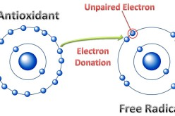 Electrons as Antioxidants: A Key to Health