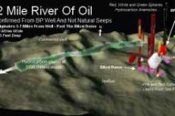 22 Mile Plume Of Oil From BP Gulf Oil Spill Originates Near Biloxi Dome Sea Floor Leaks 7 Miles Away