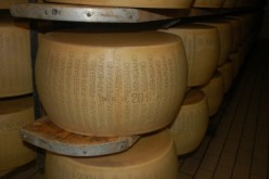 Most Parmesan Cheeses In America Are Fake, Here's Why