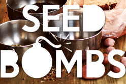 Guerrilla Gardening – How To Make A Seed Bomb