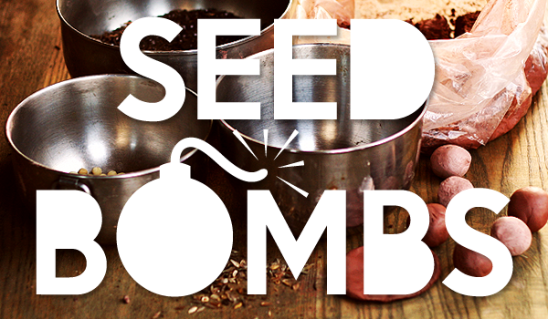 How-to-Make-Seed-Bombs